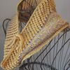 Fretted_band_cowl_-_cover