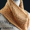 Honey_cowl_cover_small