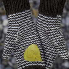 Single_stripe_mittens_cover_small
